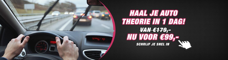 Theoriecursus auto